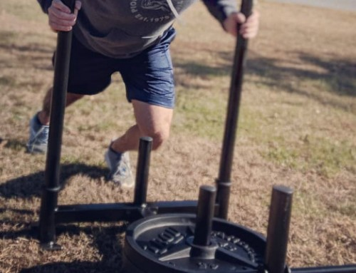 Fringe Sport Econ Prowler Sled Review