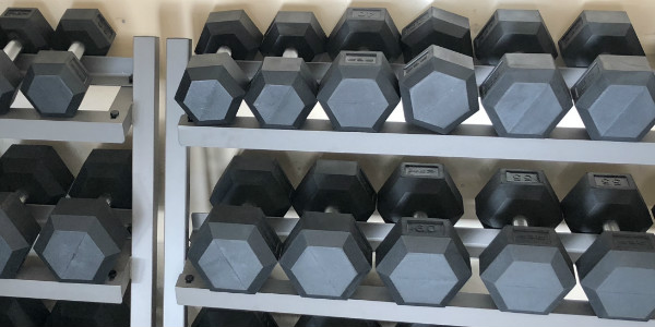 Rep Fitness rubber hex dumbbells