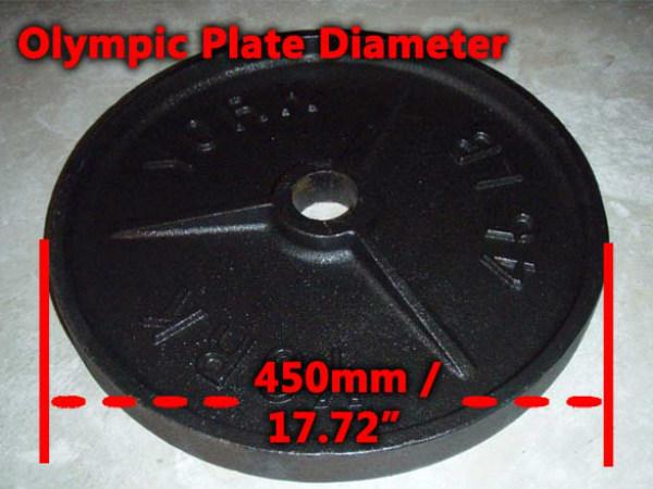45 lb plate diameter